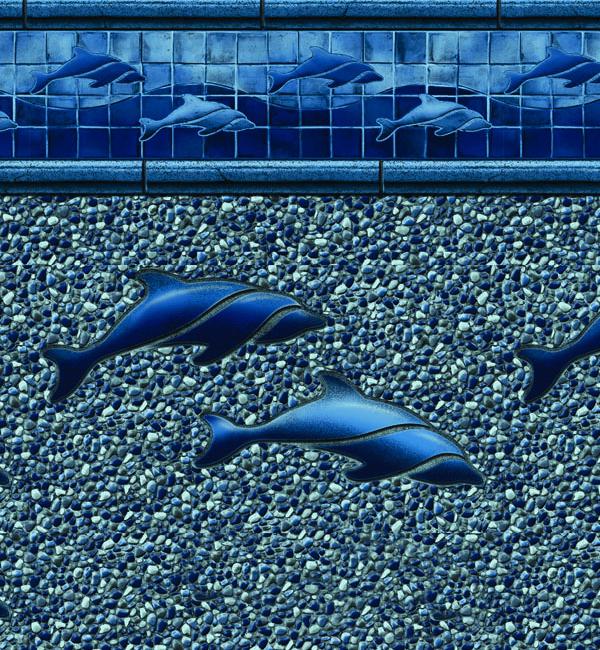 LLL2019 Dolphin Seabreeze 20M 7 3-4 L